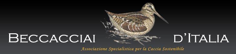 progetto ali d'italia
