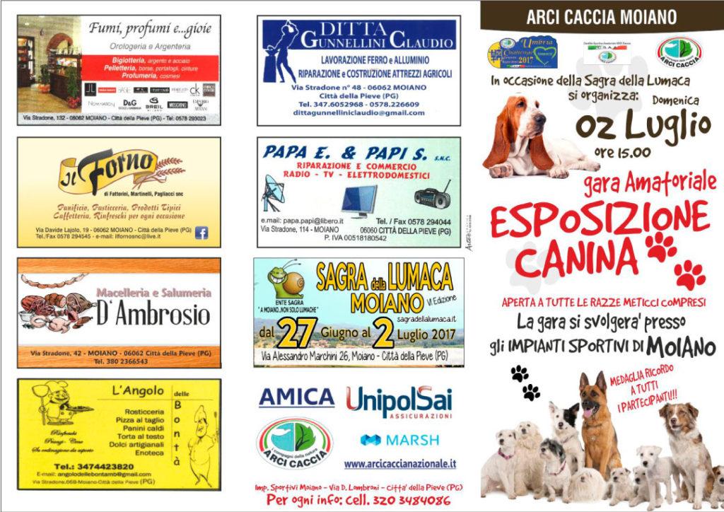 Arcicaccia Moiano Gara amatoriale Esposizione canina 2 luglio 2017
